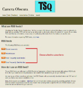 RSS Feed Options